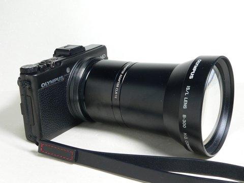 P1080549a.jpg